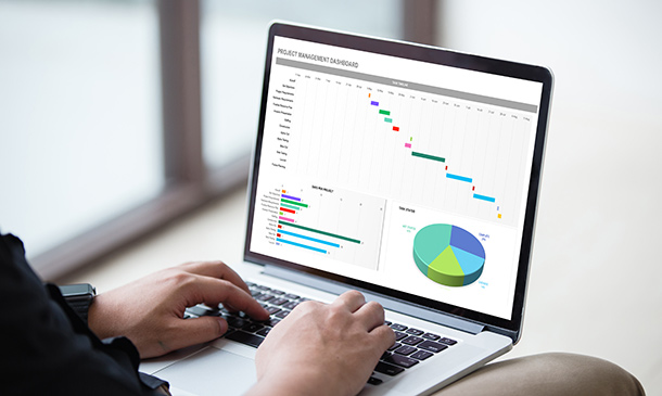 Data Analysis, Automating and Visualisation in Excel